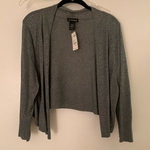 NWT Silver Sweater